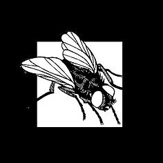 Jackson's Pest Control logo