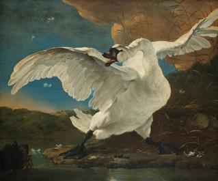 הברבורים של תולדות האמנות