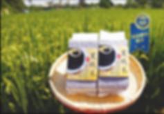 源天然 專利商品:黑纖米