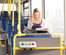 Smiley Terminal Rail model in bus.