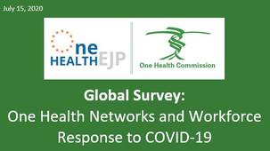 Global Survey: One Health Networks and Workforce Response to COVID-19