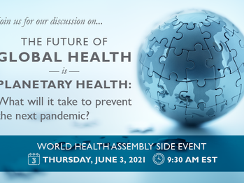 The Future of Global Health is Planetary Health: What will it take to prevent the next pandemic?