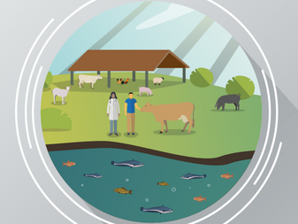 GLOBAL REPOSITORY OF AVAILABLE GUIDELINES FOR RESPONSIBLE USE OF ANTIMICROBIALS IN ANIMAL HEALTH