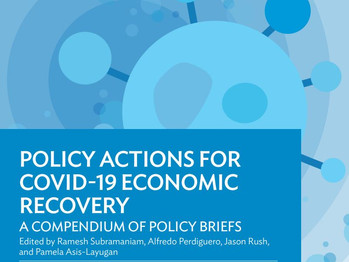 Policy Actions for COVID-19 Economic Recovery: A Compendium of Policy Briefs
