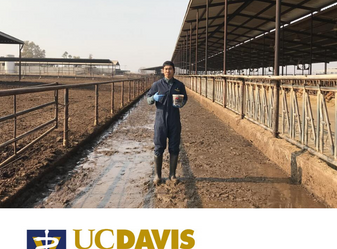 Applications are now open! The Master's in Preventive Veterinary Medicine degree program at theUC D