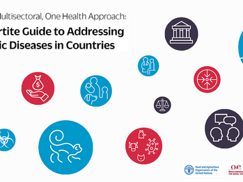 FAO, OIE, and WHO launch a guide for countries on taking a One Health approach to addressing zoonoti