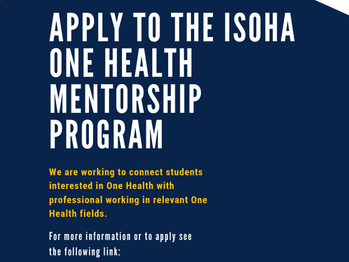 ISOHA Mentor Pilot Program