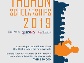 Call for application: THOHUN Scholarships 2019 for International One Health Conference/Event