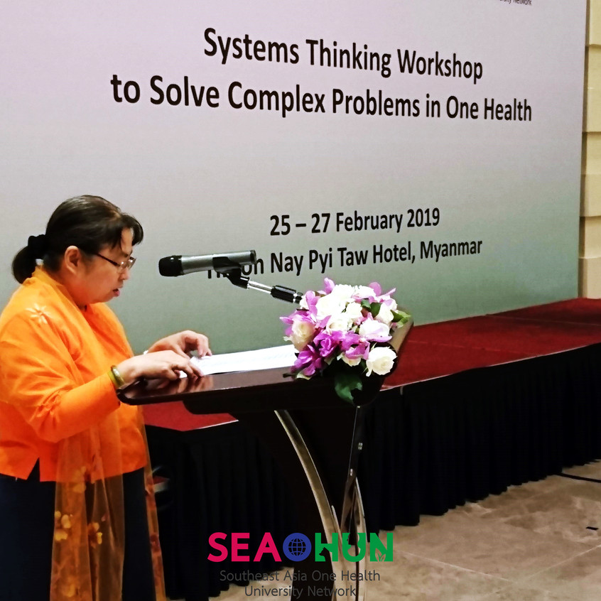The systems thinking workshop