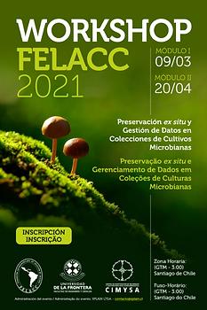 Workshop FELACC