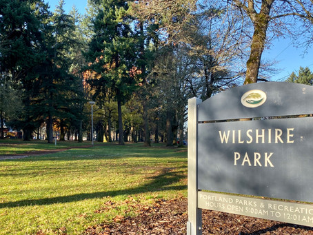 What's Next for Wilshire Park?