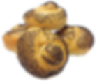 Poppyseed Knot Roll.png