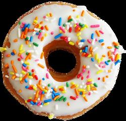 Multi Color Sprinkle Donut