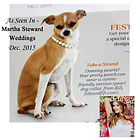 Our page in Martha Stewart's Living