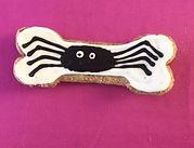 bone spider.jpg