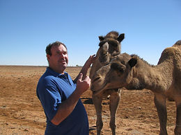 Trevor Jones camel racing Boulia.jpg