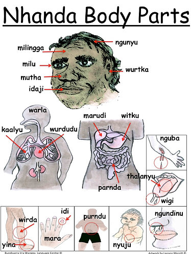 Nhanda Body Parts (topical poster)