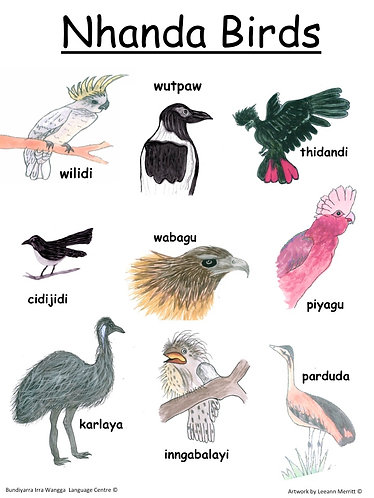 Nhanda Birds (topical poster)
