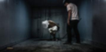 8969344645_3783608145_o_torture.jpg