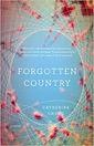 Bestseller Books Korea Forgotten Country Catherine Chung