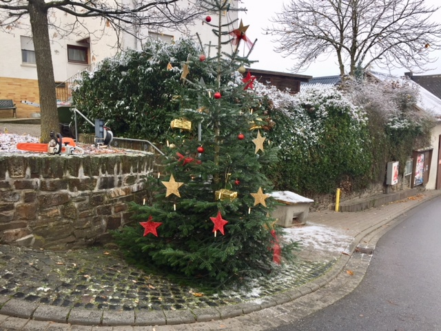 2_weihnachtsbaum2017_4