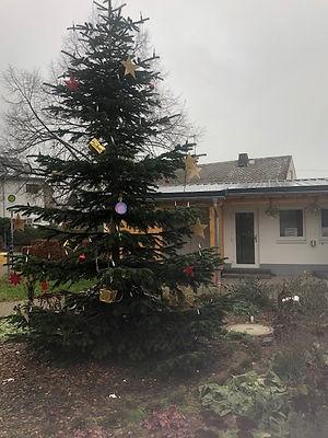 5-Weihnachtsbaum2020.jpg