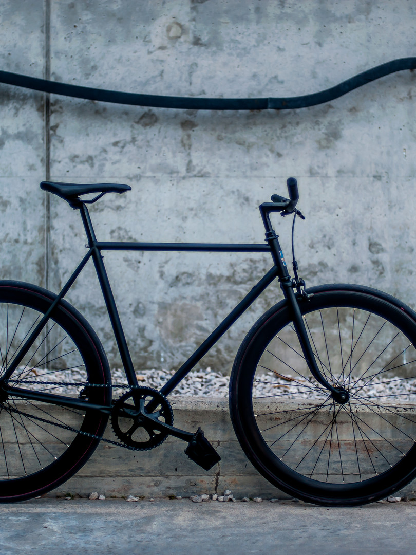 NO BREAKS FIXIE