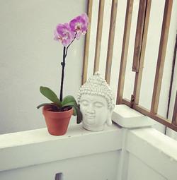 buddha jpeg