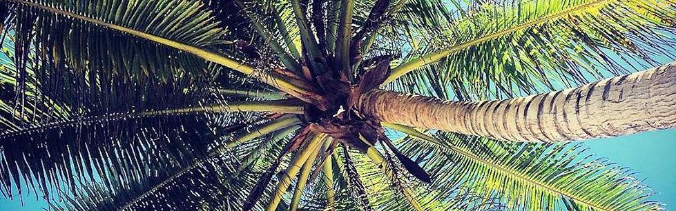 Rincon Puerto Rico Rental
