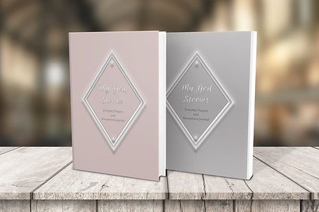 Book Cover wood two book grey blush.jpeg