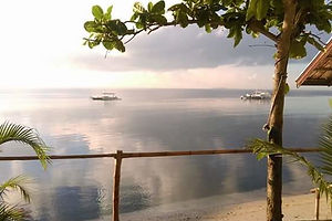 freedivehq-landscape.png