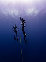 wave 2 instructor,Freediving_Training_Ph