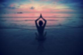 bluexperience,stage yoga,freediving,mer,bateau, nage avec dauphins