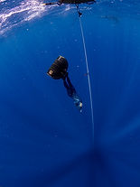 wave 3,Freediving_Training_Philippines,F