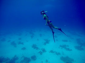 wave 1,Freediving_Training_Philippines,F