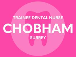 Trainee Dental Nurse - Chobham