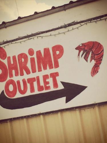 Loves da skrimps!!.jpg