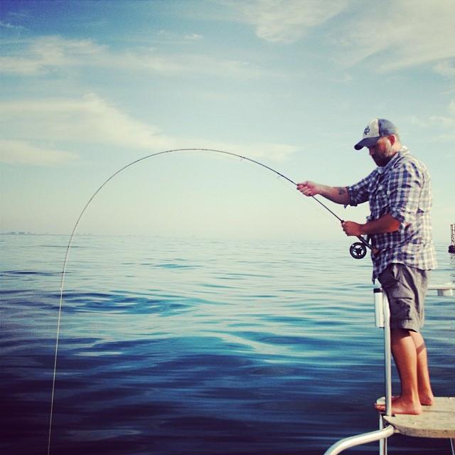My boy Andrew Marikos put me on fish wit