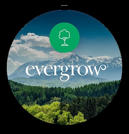 evergrow.f563a5de.png