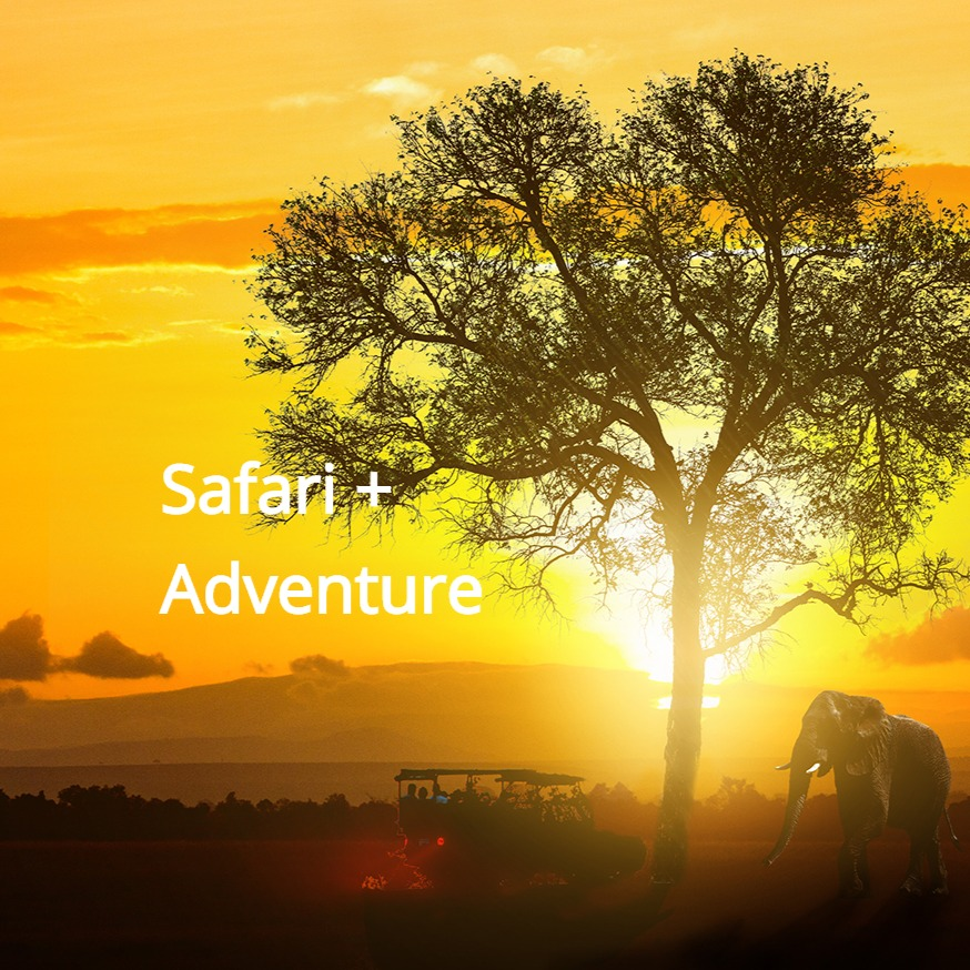 Safaris and adventures