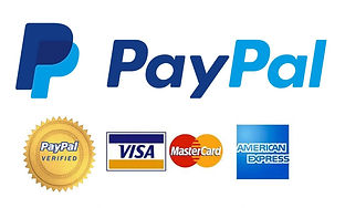 paypal-secure-payment.jpg