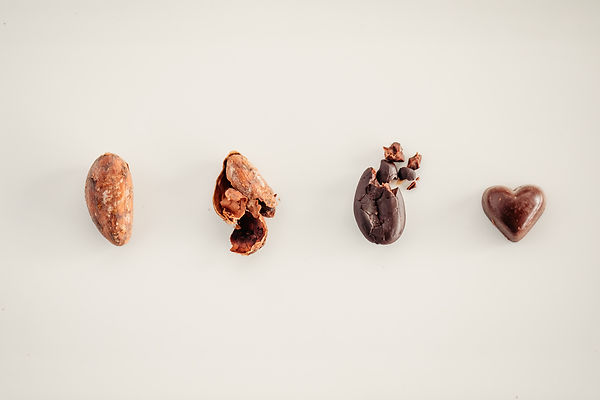 Island Sharks Bean to Bar Chocolate