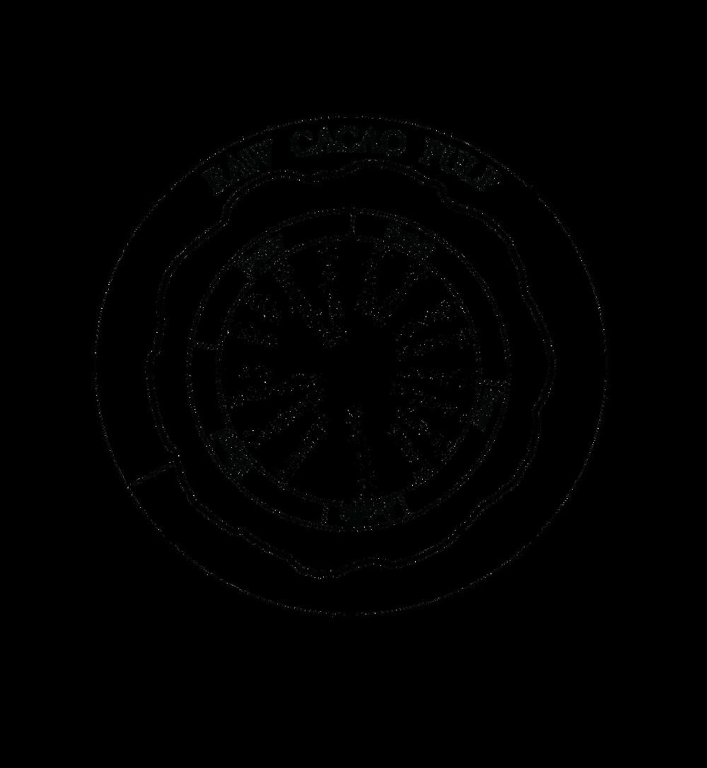 Raw Cacao Pulp Flavor Wheel