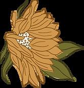 Asset 9sunflowers.png