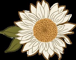 Asset 10sunflowers.png