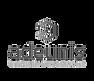 logo-adeunis.png