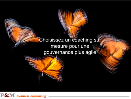 Un coaching sur mesure pour une gouvernance plus agile