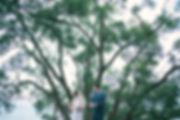 DSR09008_rt.jpg