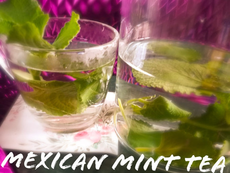 Mexican Mint Tea /Indian borage Tea