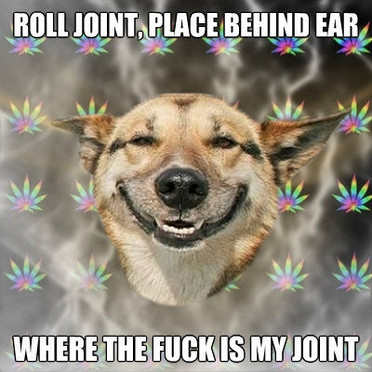 stoner-dog-joint.jpg